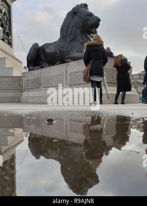 Trafalgar Square, London, UK. 21st Dec 2018.A reflection of the Lion in a puddle of rain water in Trafalgar Square after rainfall in the morning in the capital.   Credit: Dinendra Haria/Alamy Live News - Stock Photo