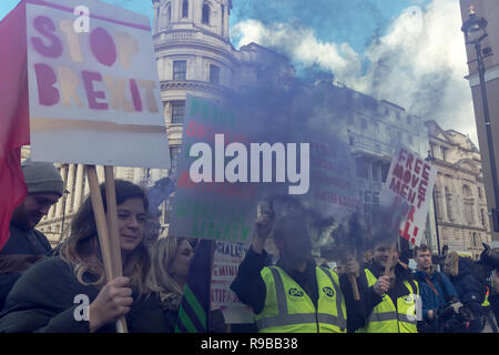London, UK. December 2018. A woman holding stop Brexit placard during a demonstration. - Stock Photo