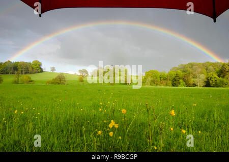 under umbrella view to full rainbow over flower meadow and trees near Midhurst, The South Downs National Park, Sussex, UK - Stock Photo