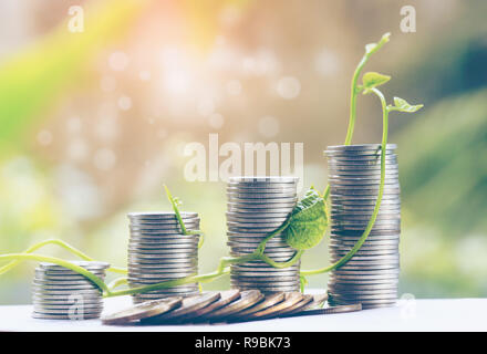 Plant Growing In Savings Coins - Investment And Interest Concept for finance and banking, saving money or interest increasing concept - Stock Photo