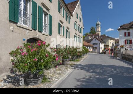 Municipality Maienfeld in the Landquart Region, Swiss canton of Graubunden. Tourist destination in the Alps, the local wine and it was the setting of the story Heidi, Switzerland. - Stock Photo