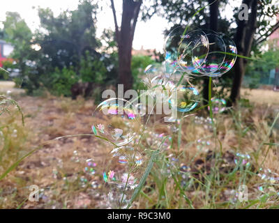 A lot of beautiful soap bubbles flying on green background, closeup. Big colorful soap bubbles in nature. Many bubbles soap on grass of garden. - Stock Photo