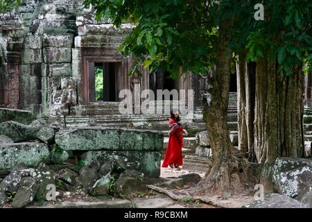 A solo woman traveller exploring ancient jungle ruins in Cambodia - Stock Photo
