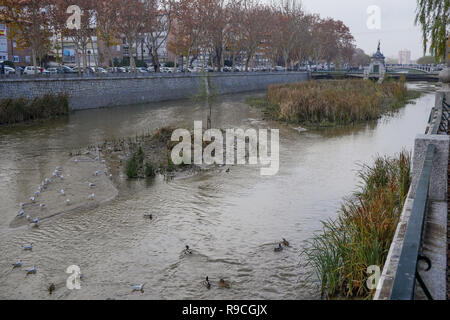 Low waters, Manzanares river, Madrid, Spain - Stock Photo