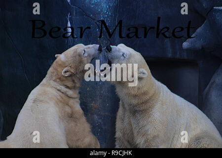 Financial investment in bear market. How to trade in risk valuation situation. Money was allocate to portfolio efficiency. Investor can get more capital gain and dividend - Stock Photo
