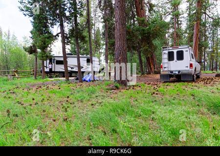42,894.03537 woman RV trailer camping & pickup truck, old ponderosa pines Malheur National Forest, Big Creek Campground, Logan's Prairie, Oregon, USA - Stock Photo