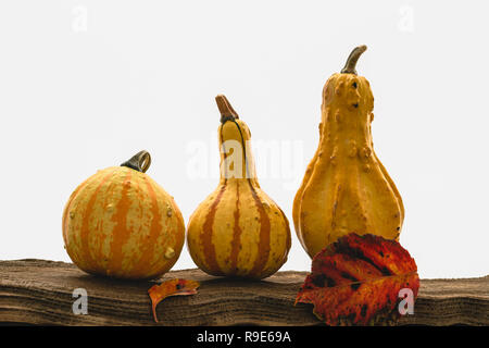 Pumpkins, apples and autumn leaves on a wood with white background - Stock Photo