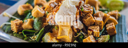 Gado-gado Indonesian salad served with peanut sauce. Ingredients: tofu, spinach, string beans, soy sprouts, potatoes, cucumber and boiled eggs BANNER, LONG FORMAT - Stock Photo