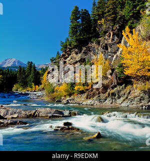 badger creek and fall colors below the rocky mountain front near heart butte, montana - Stock Photo