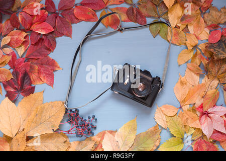 with multicolored leaves camera on a wooden background - Stock Photo