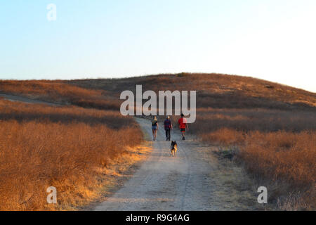 A distant family group with a dog takes an evening walk in meadows of Temecula, Riverside County, California, USA - Stock Photo