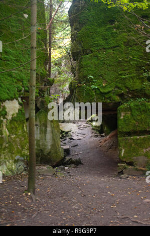 Remains of Wolf's Lair (german: Wolfsschanze), Führer's headquarters of Adolf Hitler, Rastenburg, Masuria, Poland, Europe - Stock Photo