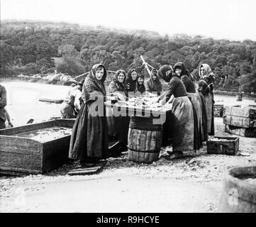 Vintage black and white photograph taken in 1893 showing a group of fishwives; women who prepare and fillet the fish caught by the local fisherman. Photograph taken in England. - Stock Photo