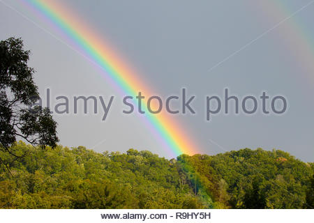 A vibrant and colorful double rainbow over trees in Tennessee during a summer light rain - Stock Photo