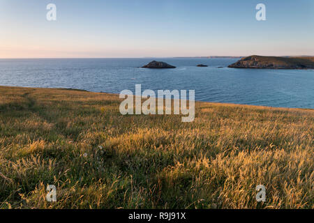 West Pentire; Cornwall; UK - Stock Photo