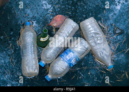Empty discarded single use plastic water bottles and an empty beer bottle - Stock Photo