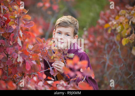 Cute handsome stylish boy enjoying colourful autumn park with his best friend red and white english bull dog.Delightfull scene of pretty boy together  - Stock Photo