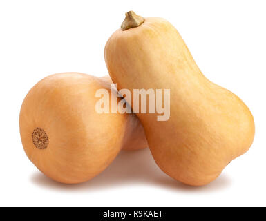 butternut squash path isolated - Stock Photo