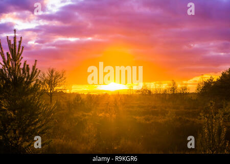 sunset in a moorland landscape with pink nacreous clouds, a rare winter weather phenomenon - Stock Photo