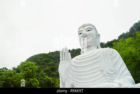 White Buddha statue / The  big buddha statue on hilltop mountain and tree background - Stock Photo