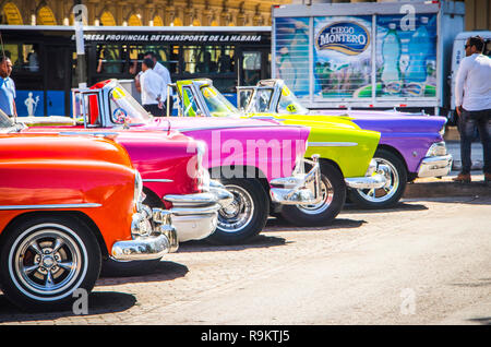 row of 5 multicoloured American classic cars in Havana Cuba - Stock Photo