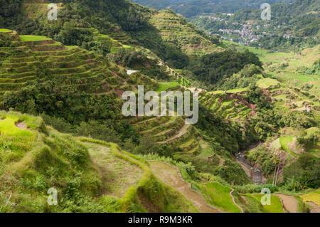 Banaue Rice Terraces, Ifugao Province, Cordillera Region, Luzon, Philippines, Asia, South Asia, UNESCO World Heritage - Stock Photo