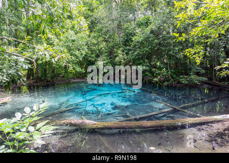 The Blue Lagoon in Krabi, Thailand, famous destination for tourists part of nearby Emerald Pool - Stock Photo