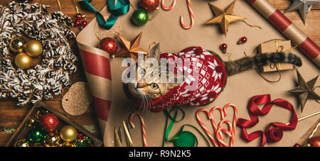 Getting ready for Christmas or New Year holiday. Flat-lay of decorations, ribbons, gift paper, door wreath, glittering balls, candy canes and cat in C - Stock Photo