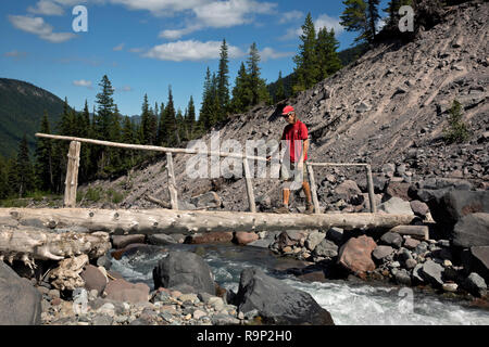 WA15618-00...WASHINGTON - Hiker crossing a log bridge over the Inter Fork on the Emmons Moraine Trail in the White River Valley of Mount Rainier Natio - Stock Photo
