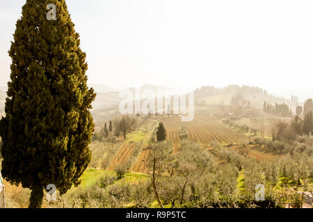 Spring beautiful landscape, early morning in Tuscany, Italy - Stock Photo