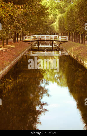 Wooden white footbridge over small water channel river amidst autumn trees with yellow red leaves. - Stock Photo