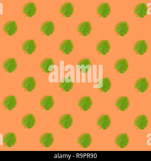 Tropical palm monstera leaves lies on a pastel colored paper. Nature summer concept pattern. Flat lay composition. Top view. - Stock Photo