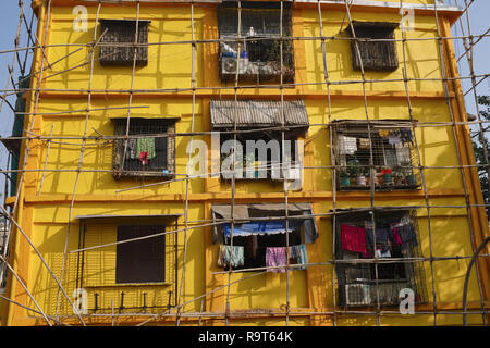 A house covered in simple bamboo scaffolding from having received a new coat of yellow paint, Mumbai, India - Stock Photo