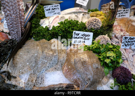 Borough Market London fish stall display of best Inshore Cornish Brill fillets & octopus with parsley and various seafood in Southwark  KATHY DEWITT - Stock Photo