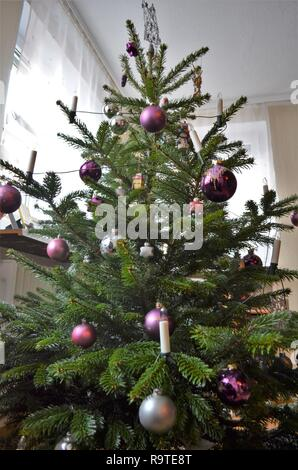 decorated christmas tree in the living room, silver and purple ball decorations on a green fir - Stock Photo
