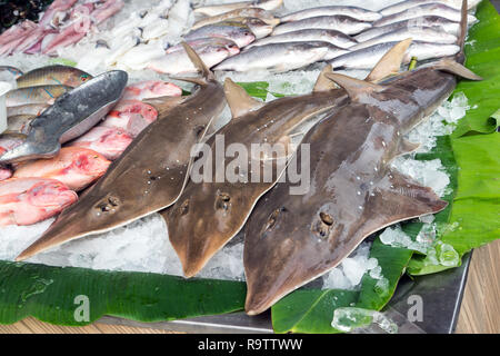 Fresh Seafood Catch, Sharks and Fish on Ice for Sale on Street Outside a Restaurant in Phuket, Thailand - Stock Photo