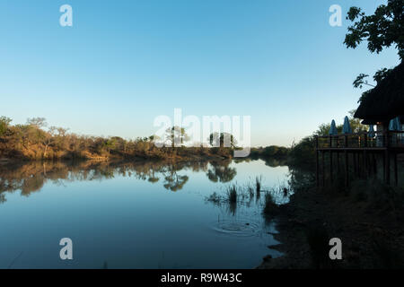 Watering hole at Thornybush Lodge early in the morning, South Africa - Stock Photo