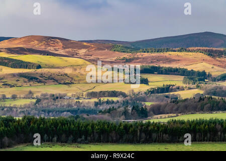 Selkirk, Scottish Borders, UK. 22nd December 2018. Sunshine illuminates Linglie Hill and the Three Brethens, the hillsides marches are patrolled durin - Stock Photo