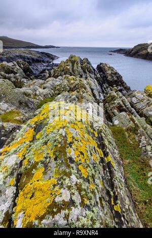 Lichen covered rocks, Kilchiaran Bay, Rhinns of Islay, Inner Hebrides, Argyll & Bute, Scotland - Stock Photo