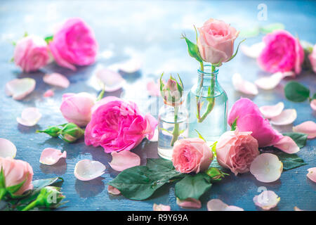 Pink peony roses, petals, and leaves on a wet rainy background in the morning light. Spring header with copy space - Stock Photo