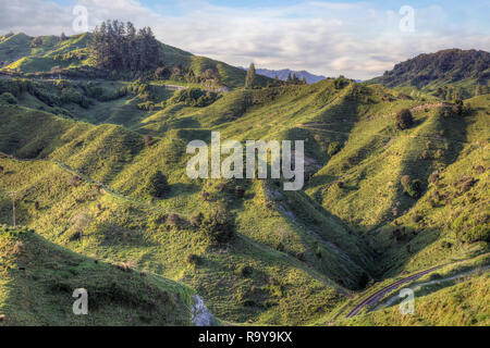 New Zealand State Highway 43, Forgotten World Highway, Ohura, King Country, North Island, New Zealand - Stock Photo