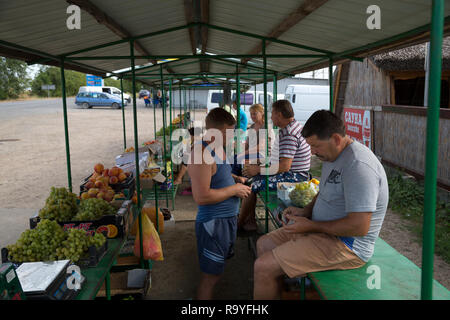 30.08.2016, Olanesti, Rajon Stefan Voda, Republik Moldau - Verkauf von Obst an einer Tankstelle in der Naehe zur ukrainischen Grenze. 00A160830D282CAR - Stock Photo