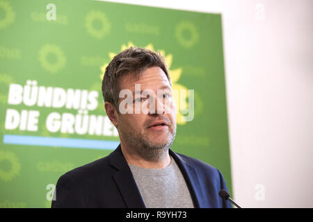 05.11.2018, Berlin, Deutschland - Robert Habeck, Bundesvorsitzender Buendnis 90/DIE GRUENEN. 00R181105D261CARO.JPG [MODEL RELEASE: NO, PROPERTY RELEAS - Stock Photo