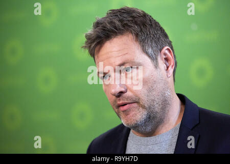 05.11.2018, Berlin, Deutschland - Robert Habeck, Bundesvorsitzender Buendnis 90/DIE GRUENEN. 00R181105D347CARO.JPG [MODEL RELEASE: NO, PROPERTY RELEAS - Stock Photo