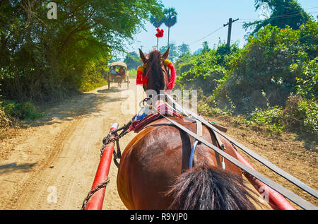 Enjoy the fast ride in horse-drawn cart along the countryside road of Ava, surrounded by jungle forests and farmlands, Myanmar. - Stock Photo