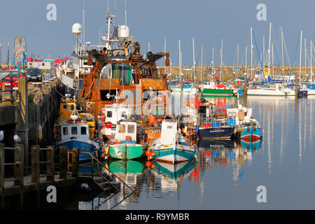 A fleet of various types of fishing boats, moored up in the harbour at Scarborough in North Yorkshire. - Stock Photo