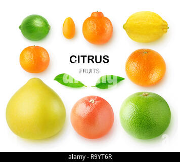 Isolated citrus fruits. Pomelo, grapefruits, orange, lemon, clementine, kumquat, lime and mandarin isolated on white background with clipping path - Stock Photo