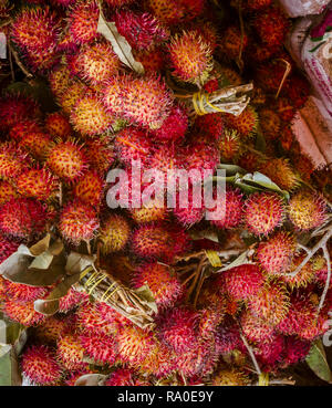 Market bundle of rambutan - Stock Photo