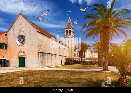 Church of St. Dominic in Trogir Croatia. St Dominic church (Dominican church) in the old town of Trogir, Croatia. Seagull's flying over Trogir. - Stock Photo