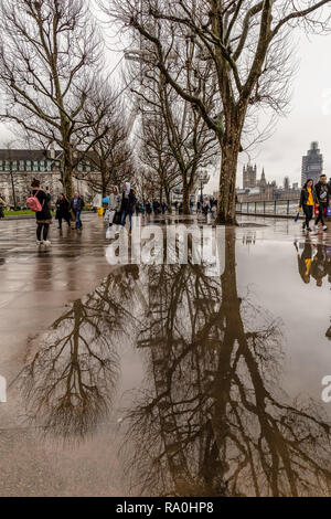 The London Eye and trees on the South bank of the River Thames in London, England, reflected in pools of rain water. - Stock Photo